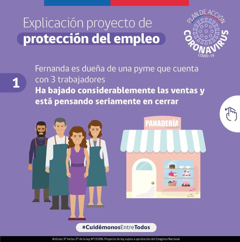 """LIRemun """"Ley Protección Empleo"""""""